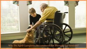Read more about the article Why Do Aged Caregivers Recommend Pet Therapy For Seniors?