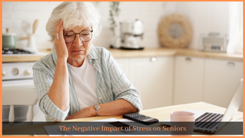 You are currently viewing The Negative Impact of Stress on Seniors