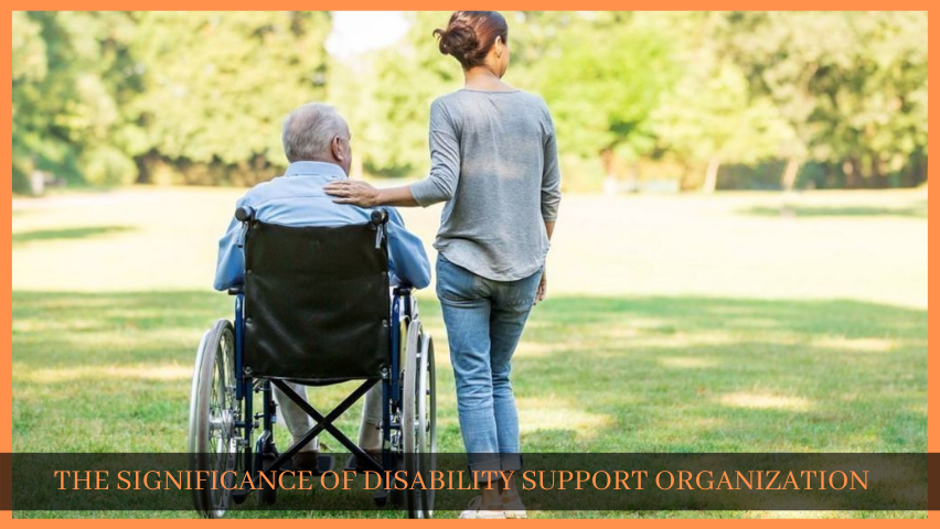 THE SIGNIFICANCE OF DISABILITY SUPPORT ORGANIZATION